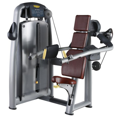 Delts Machine Used As Gym Machine With Pretty PU Leather